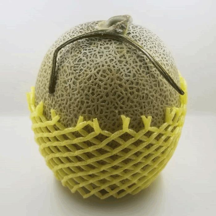 日本網紋瓜